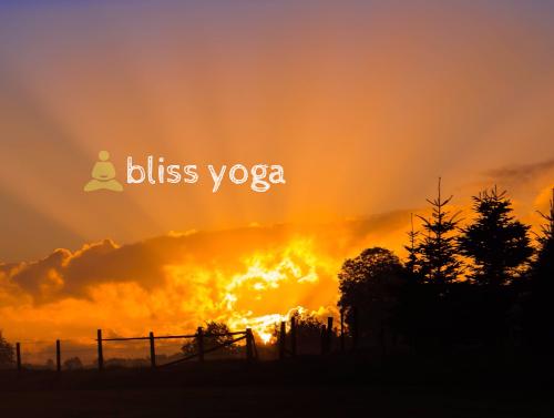 Bliss Yoga